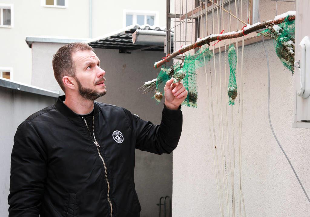 badanie zanieczyszczeń powietrza z wykorzystaniem mchów