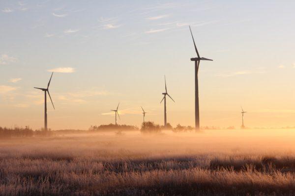 Elektrownia wiatrowa owiana mgłą, będąca symbolem transformacji klimatycznej