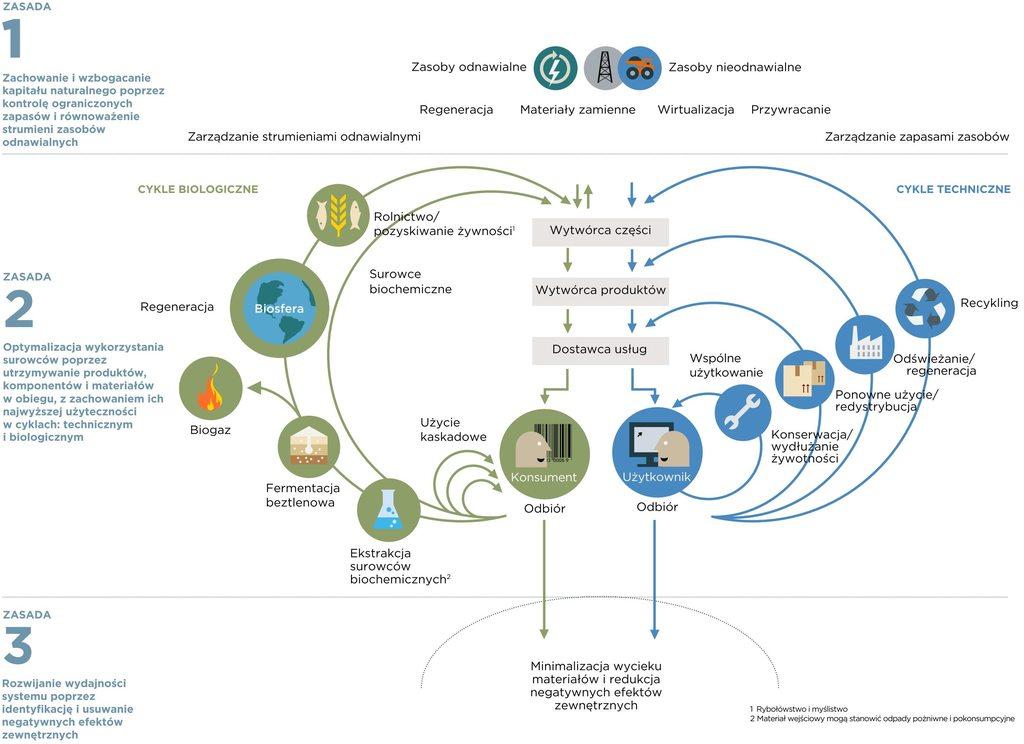 schemat gospodarki o obiegu zamkniętym z uwzględnieniem zasad rozwoju