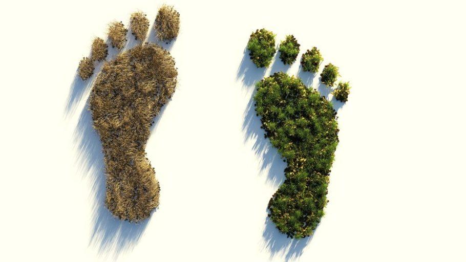 ślad węglowy wpływający na środowisko